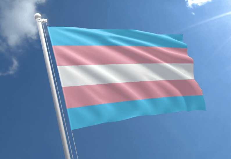 trans-flag-horizontal.png