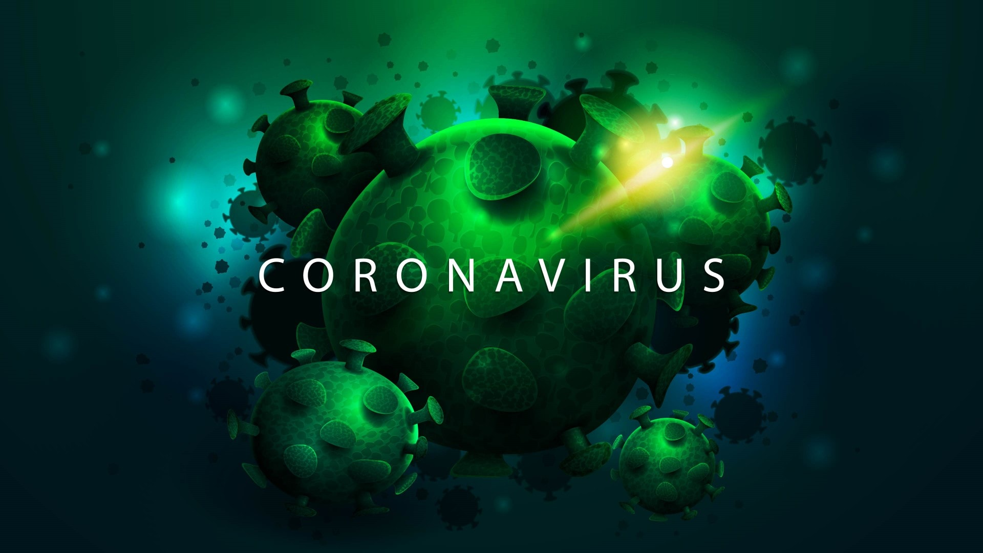 coronavirus florida 13