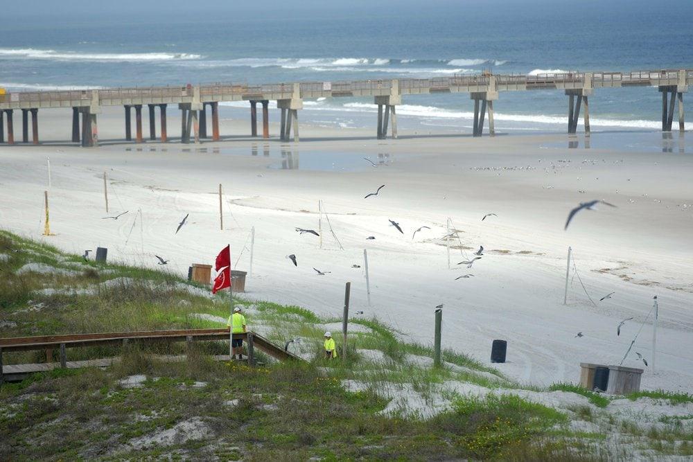 AP-Jacksonville-Beach.jpeg