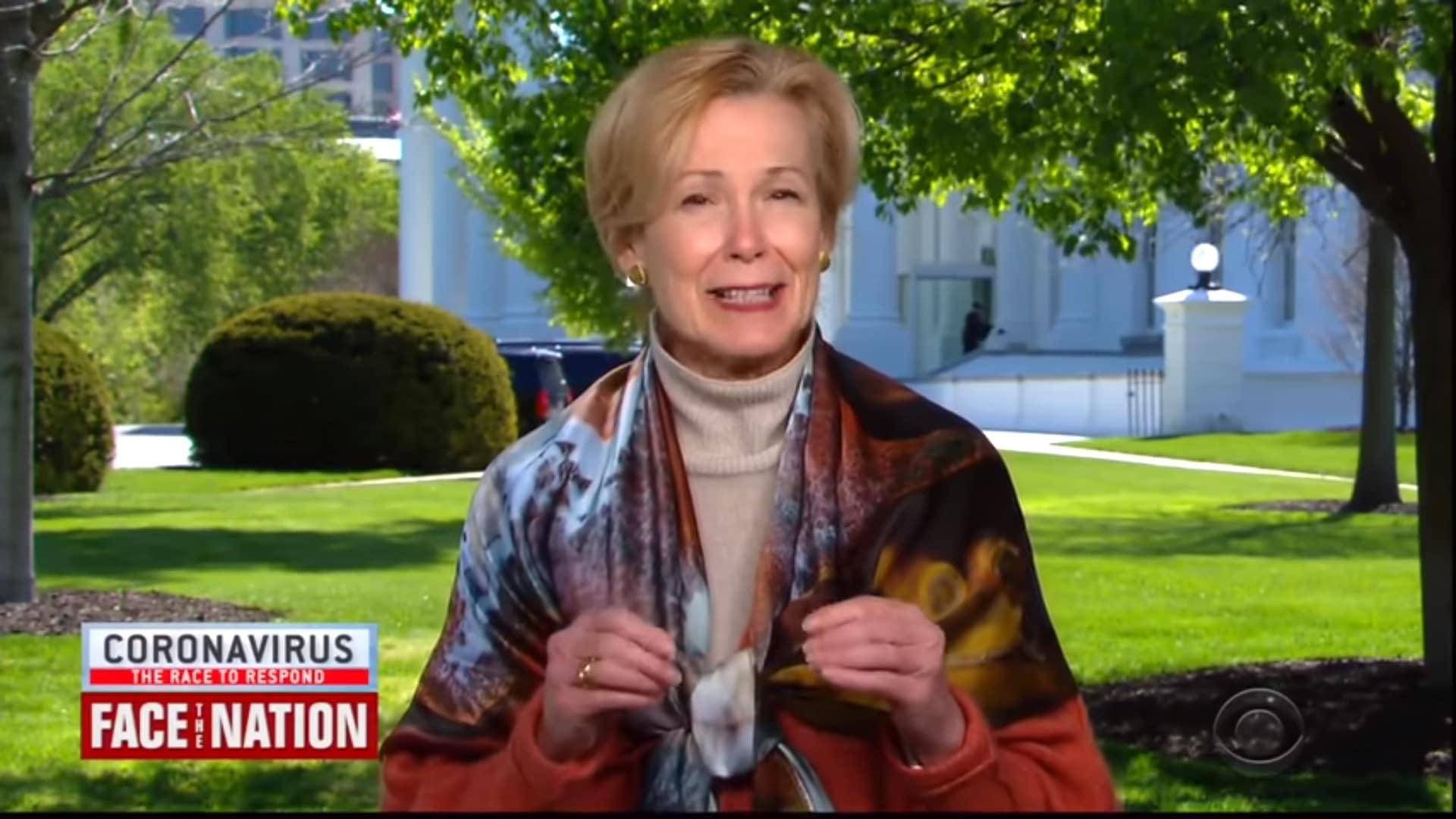 Deborah Birx on Face the Nation