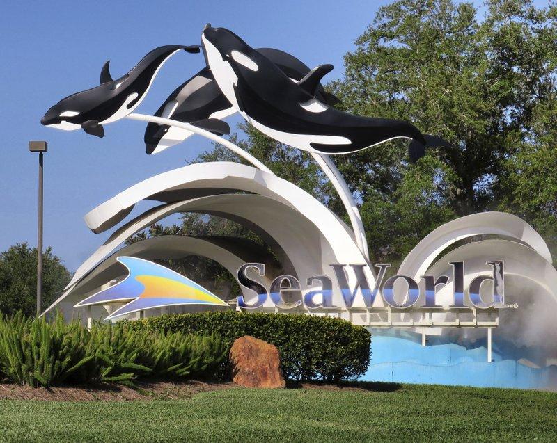SeaWorld.jpeg