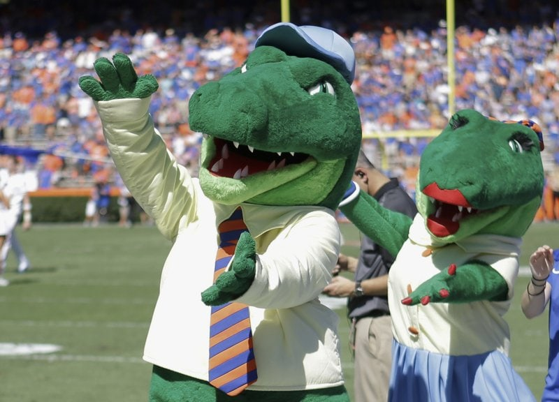 University-of-Florida-Gators.jpeg