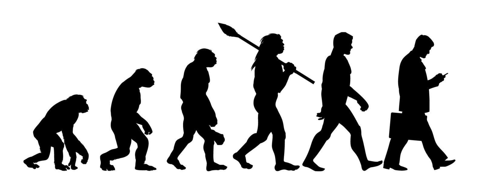 evolution-Converted-e1592424718980.jpg