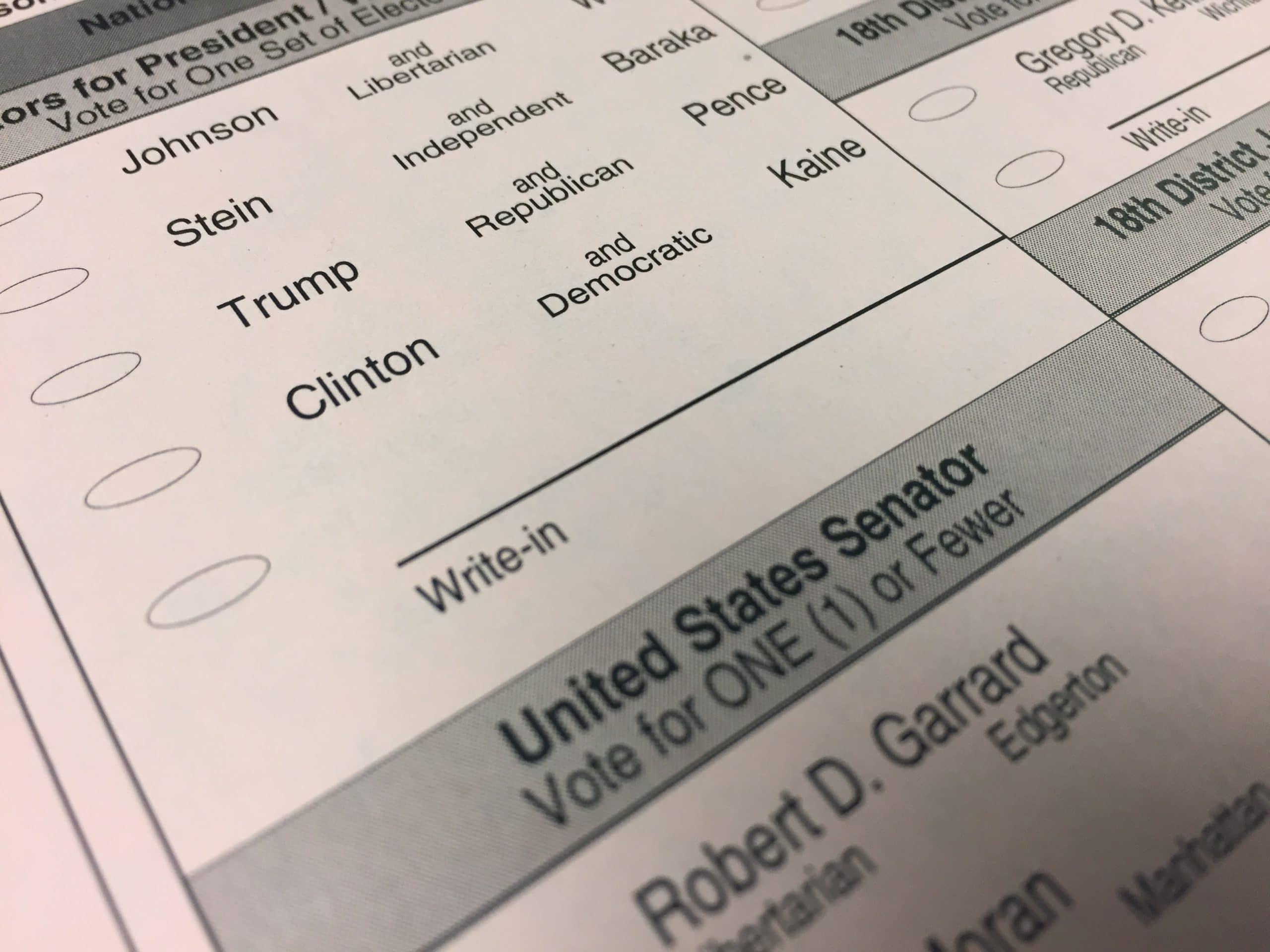 write-in-candidate-scaled.jpg