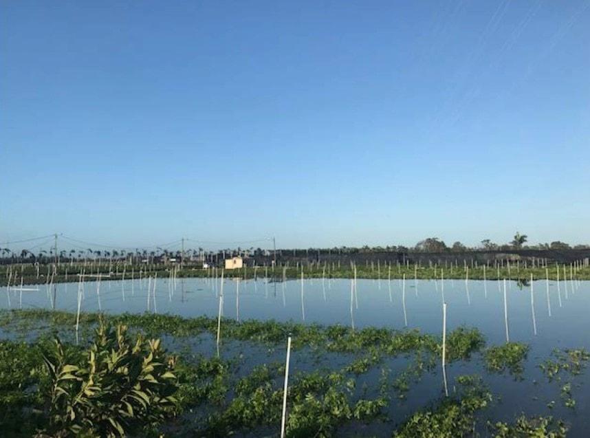 in-land-flooding.jpg