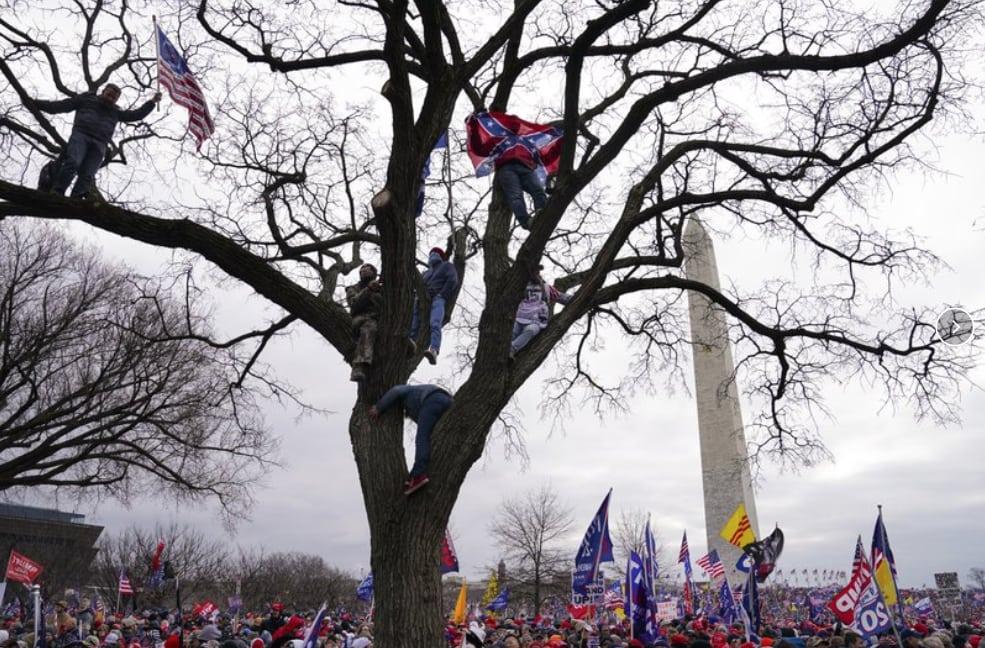 Washington-rally.jpg