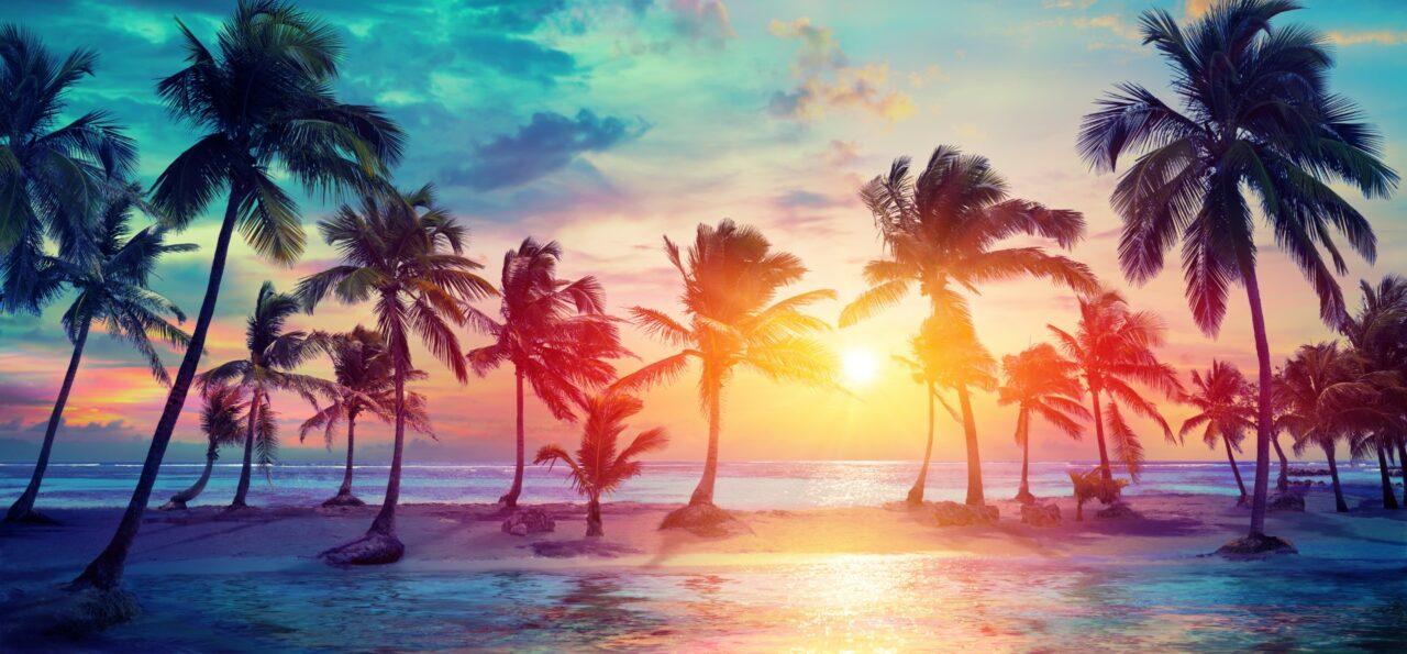 Sunset-Large-1280x595.jpeg