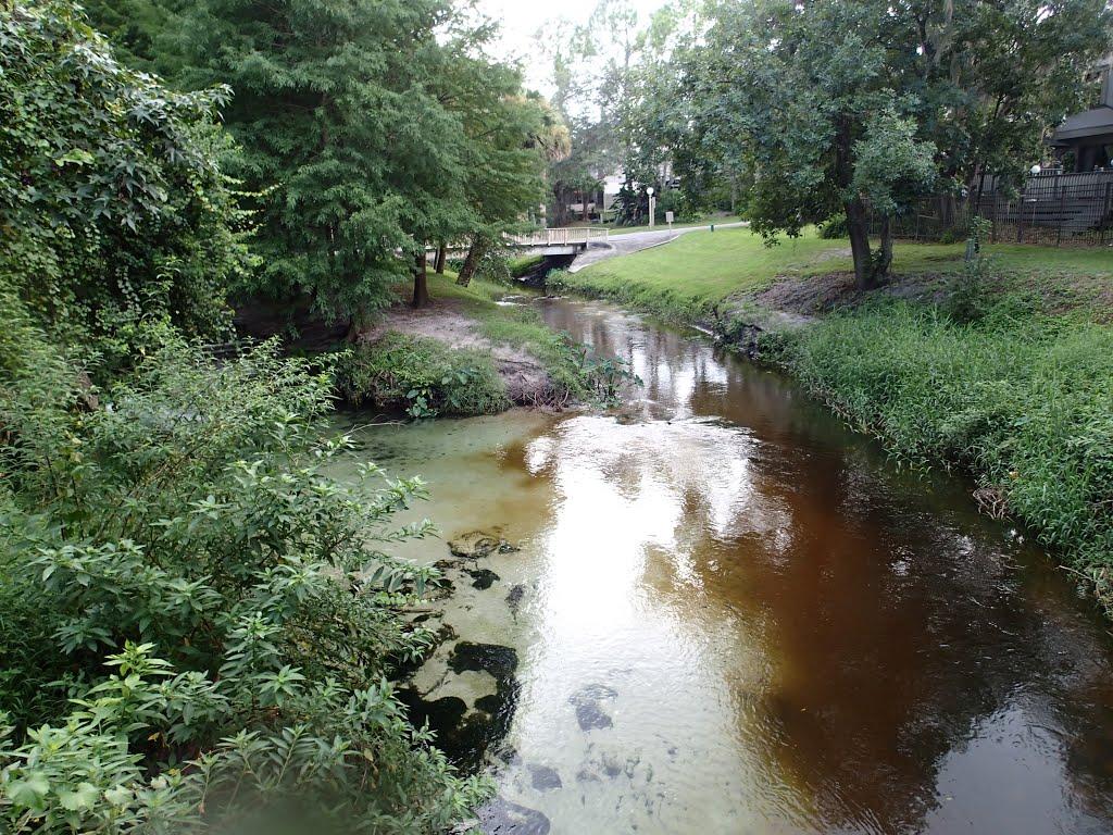 Little-Wekiva-River.jpg