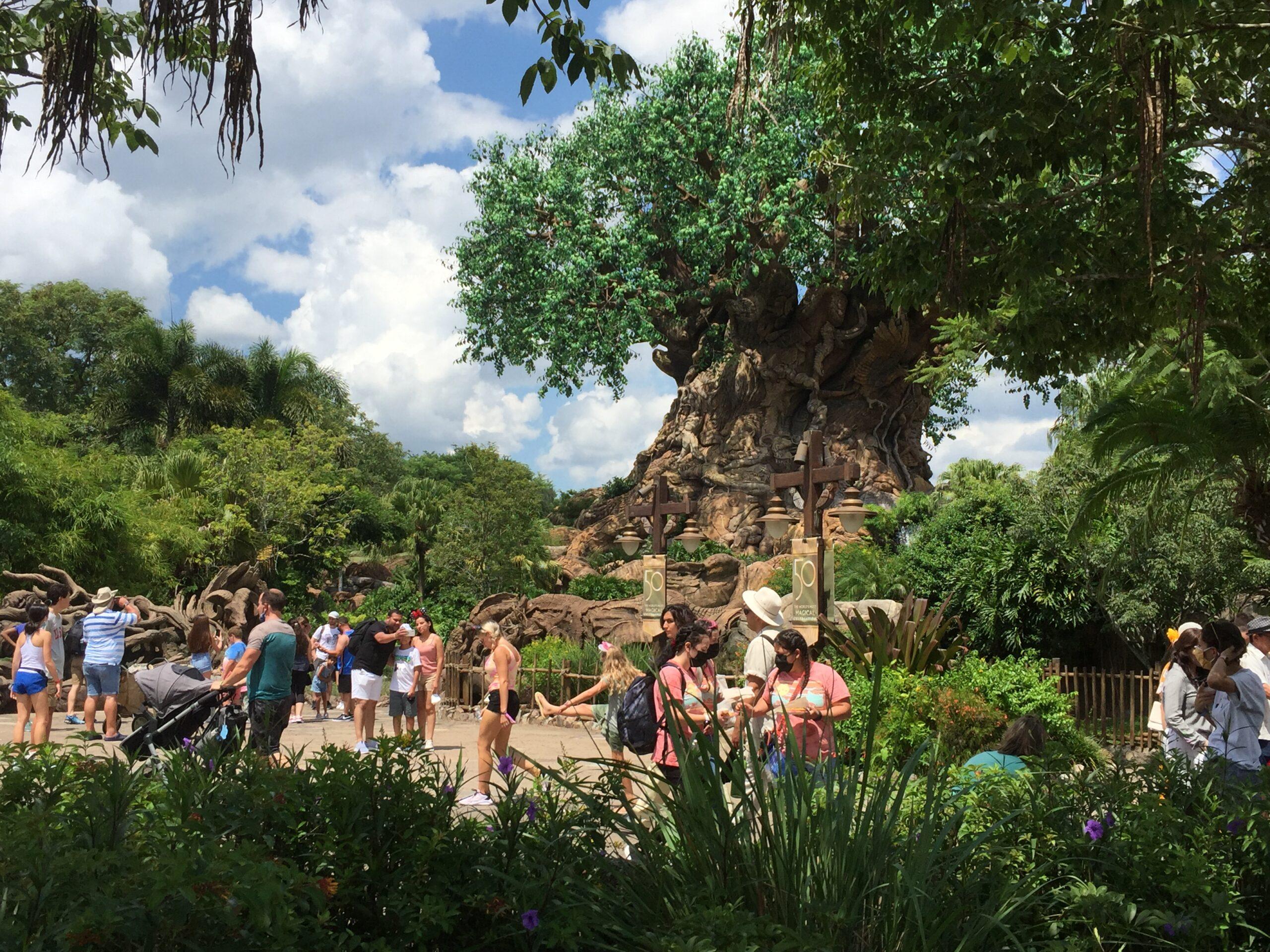 Labor Day Disney Russon (2)