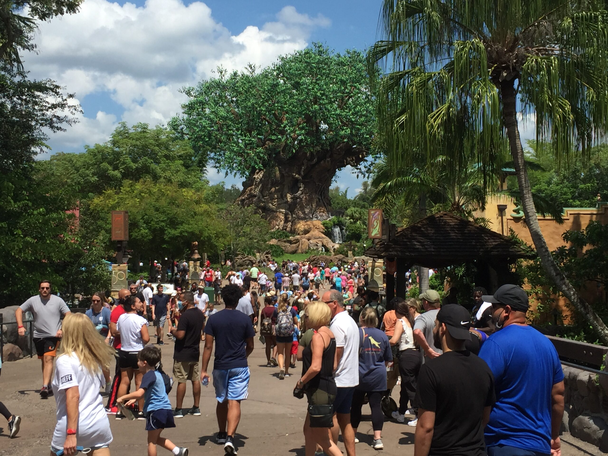 Labor Day Disney Russon (3)