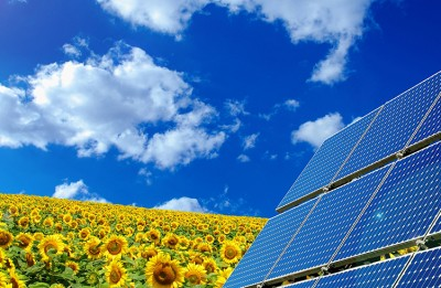 New solar power amendment in Florida up in poll, another one down
